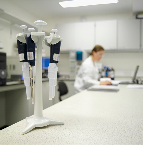 pipettes lab bench